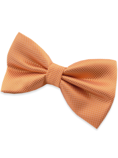 Nœud papillon orange
