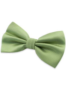 Nœud papillon vert clair