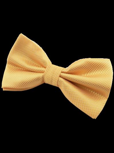 Nœud papillon jaune