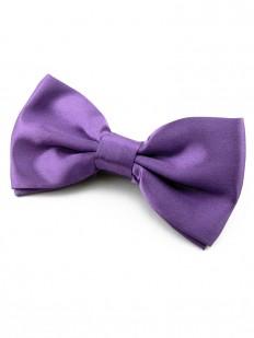 Noeud papillon violet